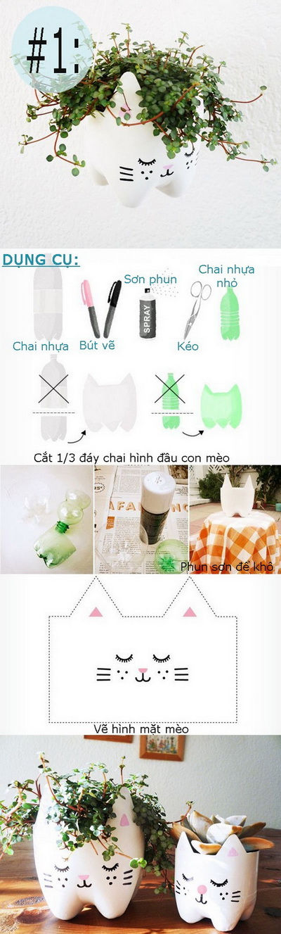 chau-cay-11