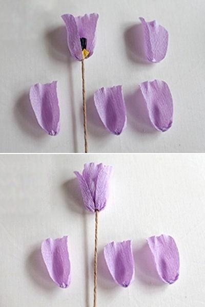 hoa-tulip-giay-h5