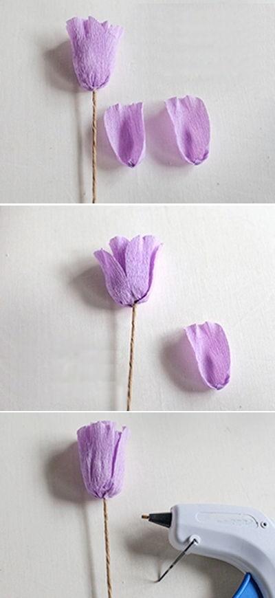 hoa-tulip-giay-h6