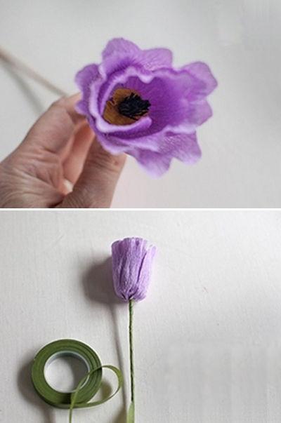 hoa-tulip-giay-h7