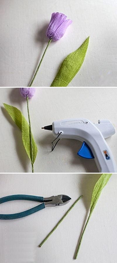 hoa-tulip-giay-h8