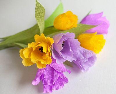 hoa-tulip-giay-h9