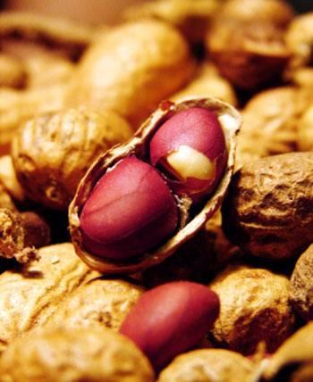 CongDungCuaLac 10 lý do tại sao ăn lạc (đậu phộng) có lợi cho sức khỏe