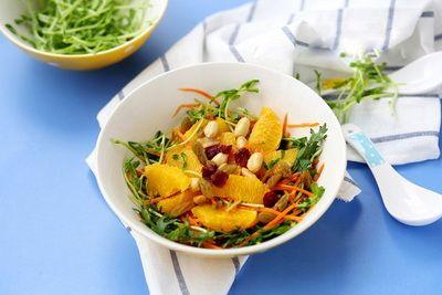 salad-cam-h4