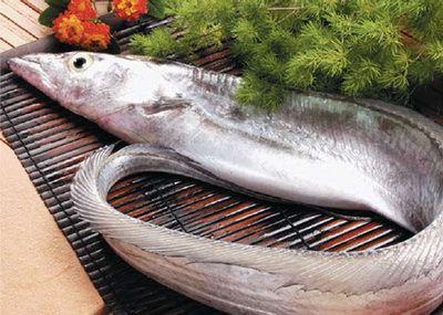 CaTot BaBau TreEm Bà bầu, trẻ nhỏ nên ăn nhiều cá