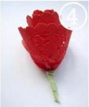 hoa-giay-11-9-4