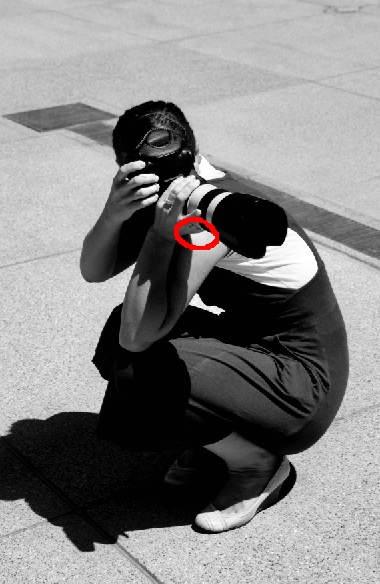 meo-giam-rung-camera_27.09.14_6