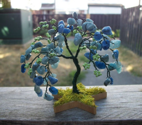 cay-bonsai-11