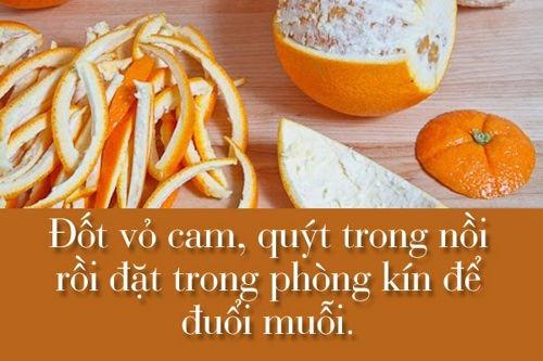 diet-muoi-10