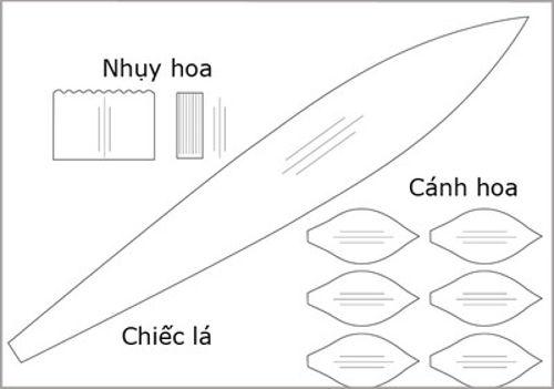 hoa-thuy-tien-20-4