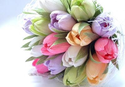 hoa-tulip-16-6-10