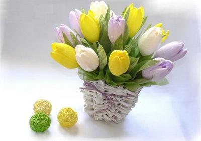 hoa-tulip-16-6-11