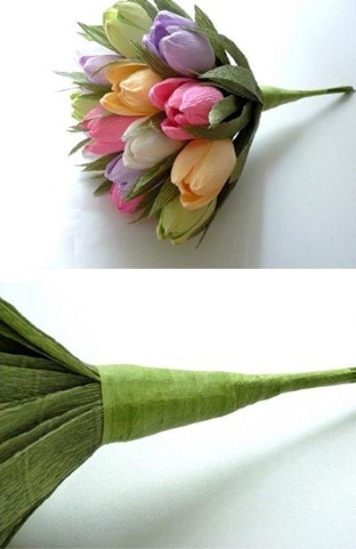 hoa-tulip-16-6-8