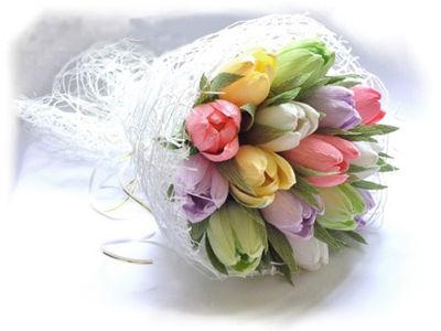 hoa-tulip-16-6-9
