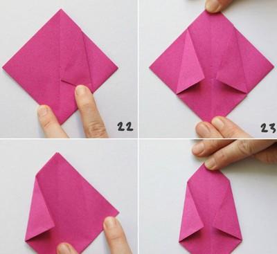 chau-hoa-tulip-20-8-5