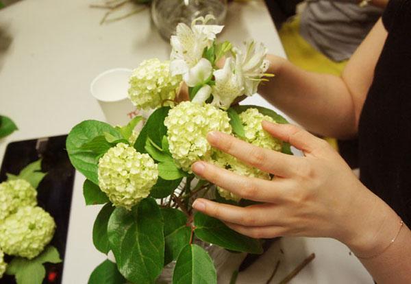 cam-hoa-trang-xanh_12.09.15_5