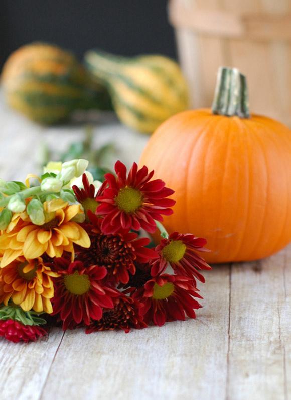 cam-hoa-Halloween_30.10.15_1