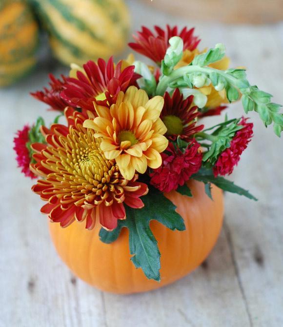 cam-hoa-Halloween_30.10.15_5