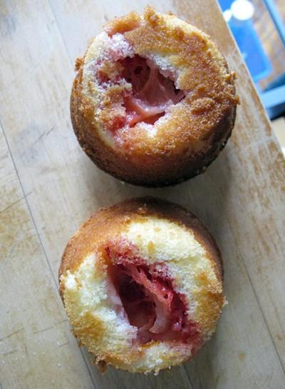 banh-cupcake-cay-thong_19.12.15_6