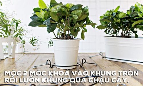 bien-vuon-nha-ban-dep-nhu-quan-ca-phe-chi-trong-mot-not-nhac-4